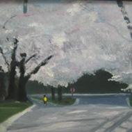 Runner Under Cherry Blossoms