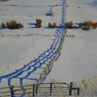 Colorado Fences